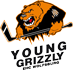 Young Grizzly